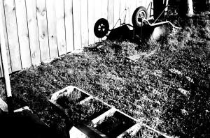 garden lomo
