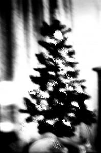 Lomo xmas tree