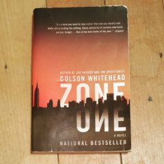 BOOK REVIEW: Zone One